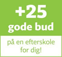 +25 gode bud