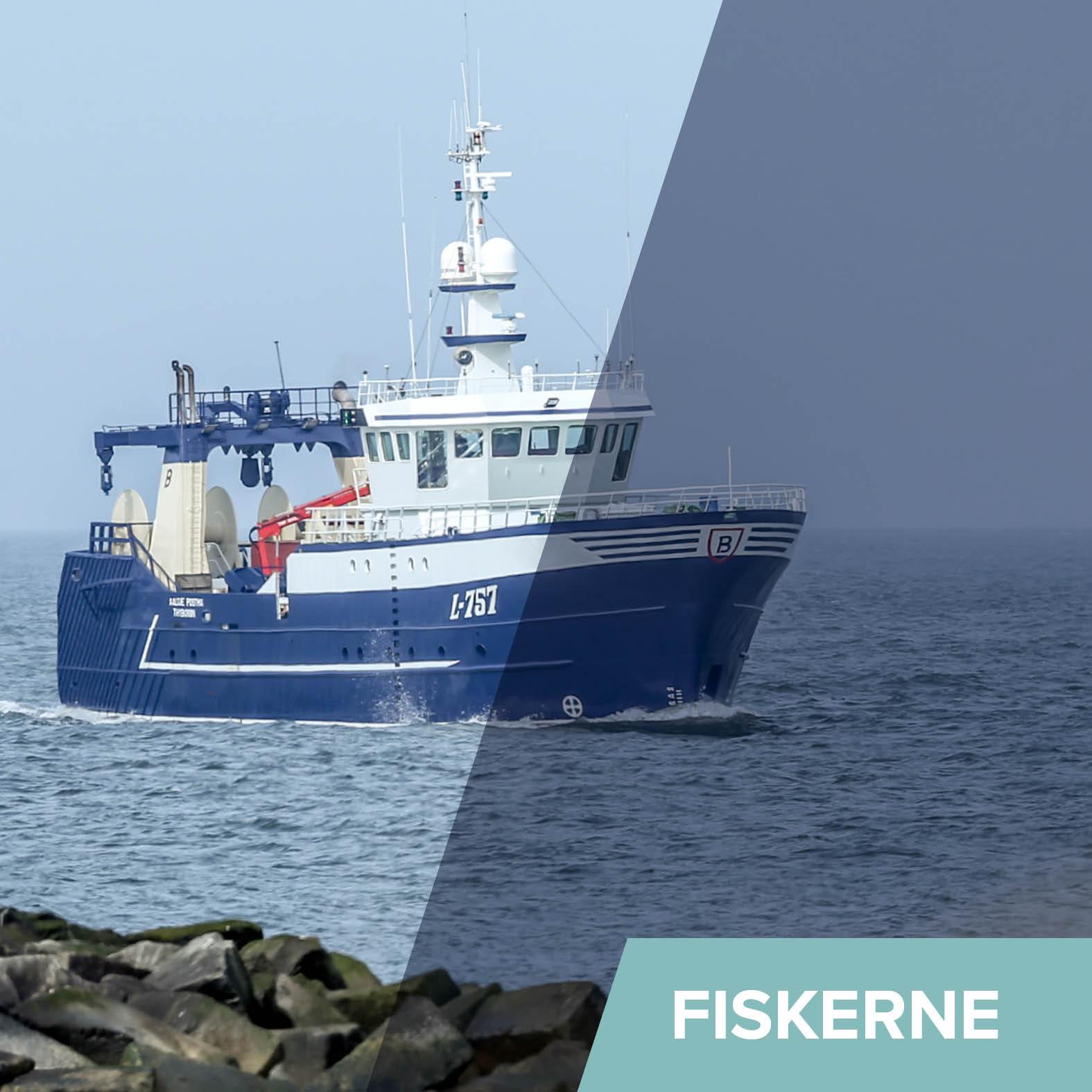 Generelt - Fiskerne