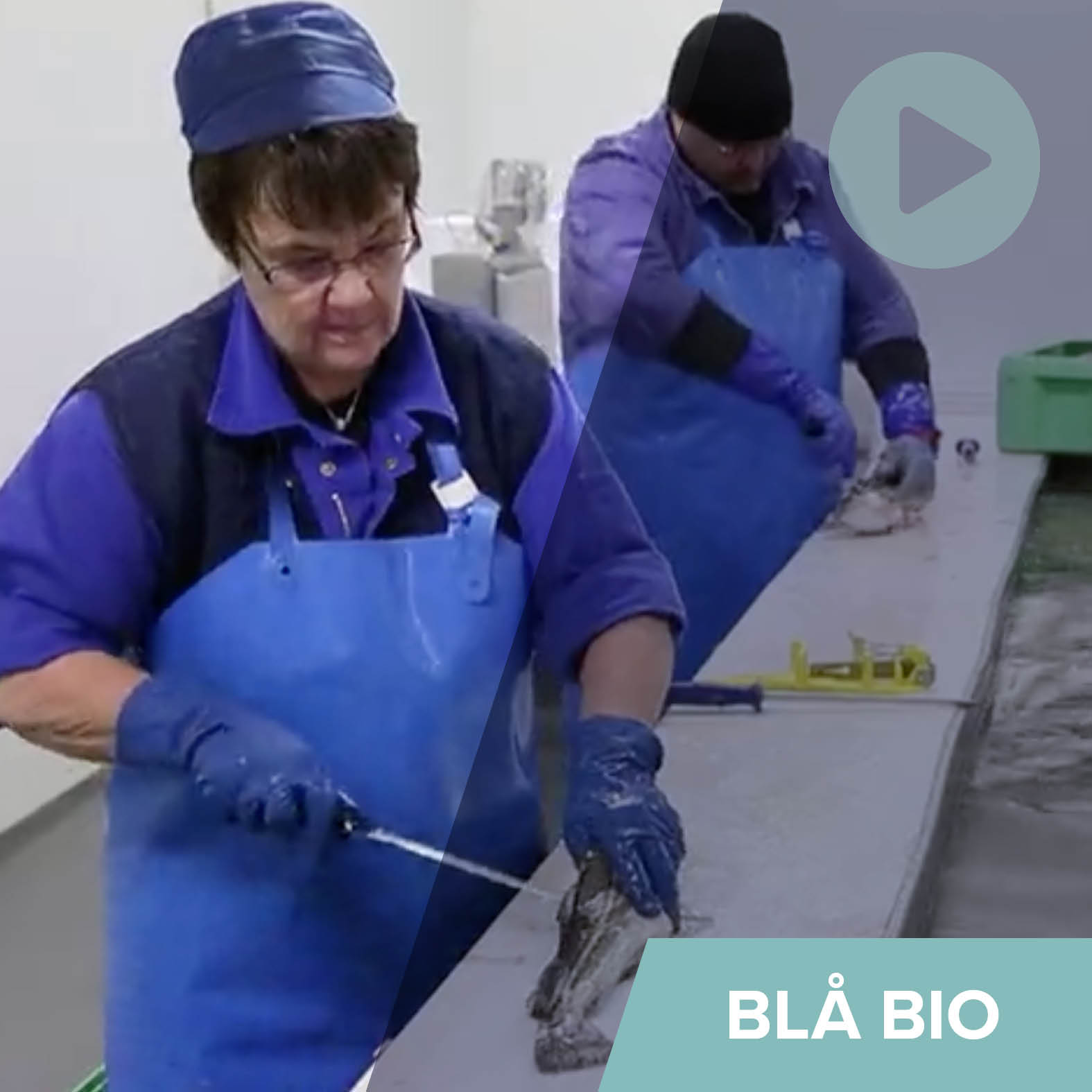 Generelt - Blå Bio