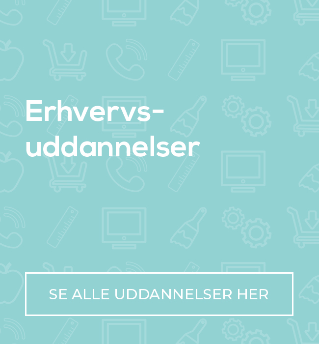 Erhvervsuddannelser  (EUD)