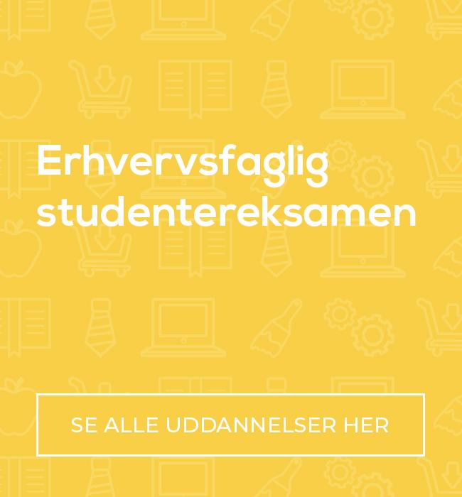 Erhvervsfaglig studentereksamen (EUX)